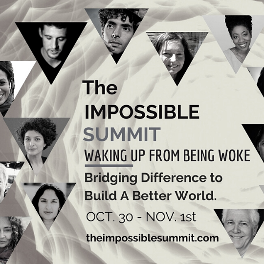 the impossible summit banner waking up from being woke climate change discussions