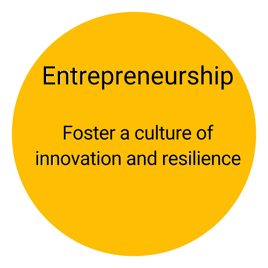 entrepreneurship: foster a culture of innovation and resilience